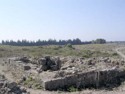 The Temple of Baal at Ugarit